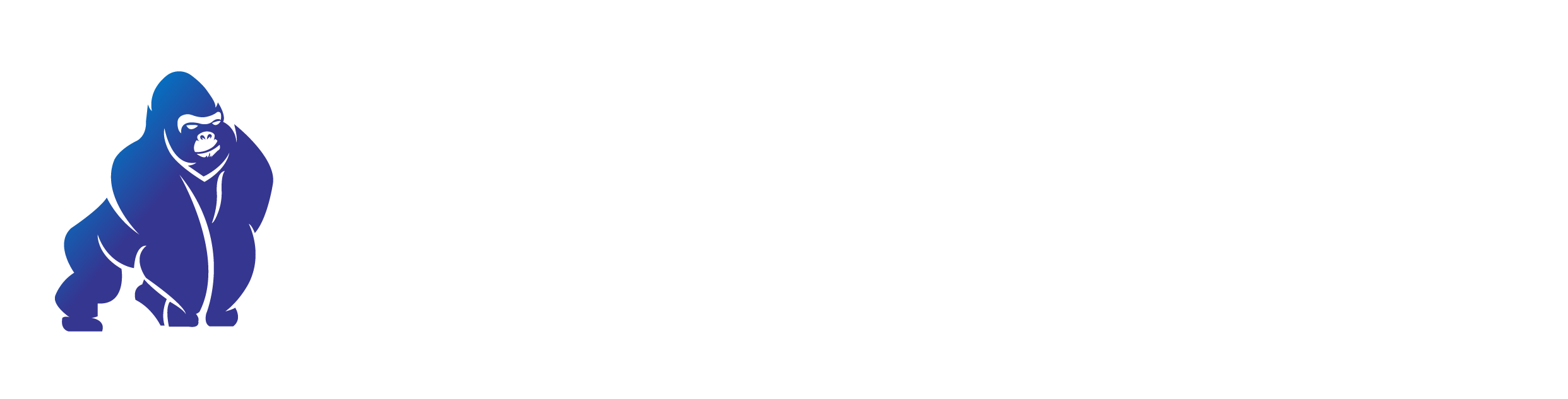 Blue Gorilla Solutions
